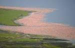 Lake Nakuru and flamingoes