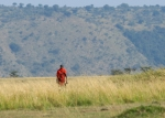 Masai on the Mara plain